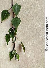 Birch Leaves over Silk Paper