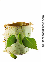 Birch leaves with birch bark on white background