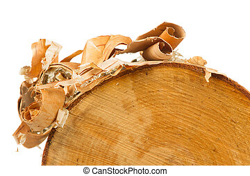 Birch Log with Bark Peels on White Background