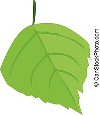 birch tree leaf one