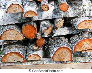 Birch tree logs