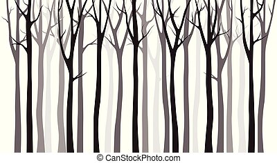 Birch tree silhouette on white background