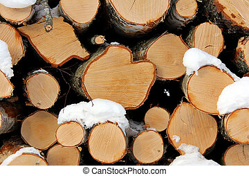 Birch Wood Logs Background