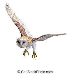 bird., フクロウ, 切り抜き, 上に, レンダリング, 道, 影, 3d, 白, 納屋