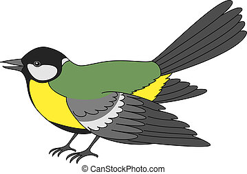 Bird a titmouse, a vector, the isolated horizontal...