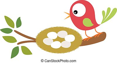 Bird and nest with eggs on tree branch