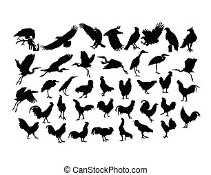 Bird And Rooster Silhouettes
