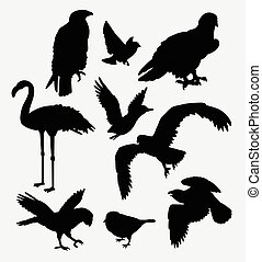 Bird animal collection silhouette