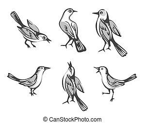 bird., apartamento, jogo, sentando, isolado, ilustração, experiência., vetorial, branca