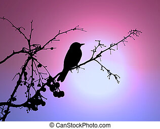 bird at the sunset - illustration of silhouette of a bird on...