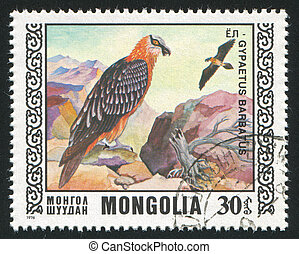bird Bearded lammergeier - MONGOLIA - CIRCA 1976: stamp ...
