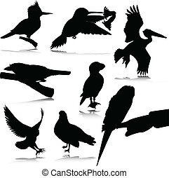 bird black silhouettes