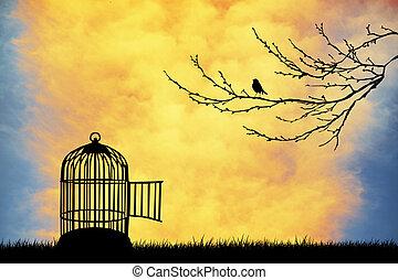 Bird cage at sunset