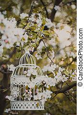 bird cage - romantic decor