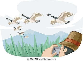Bird Canadian Geese Migrate Photo Bird Watcher