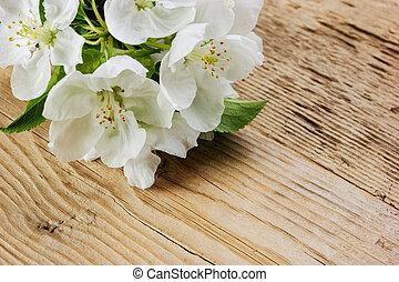 Bird cherry branch on a wooden background