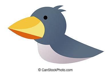 bird - a lovely bird with big orange beak isolate in a white...