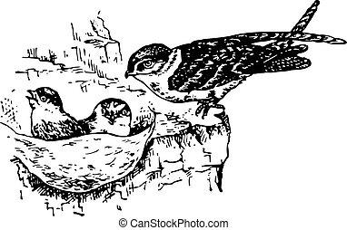 Bird collocalia near the nest with nestlings in it