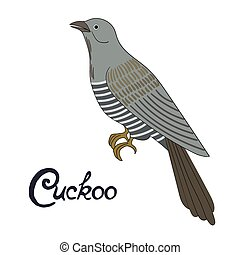 Bird cuckoo vector illustration - Bird cuckoo cartoon doodle...