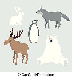 bird., cute, lebre, animais, inverno, polar, gráfico, isolado, penguin., ilustrações, jogo, vetorial, nordic, coelho, urso, selvagem, lobo, objects., alces, natal, design.