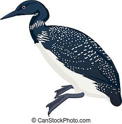 bird detalised on white background, bird in modern cartoon style