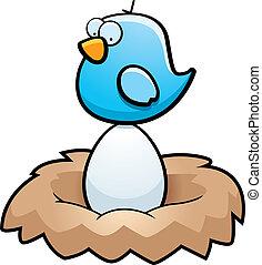 Bird Egg