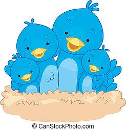 Bird Family - Illustration Featuring a Family of Birds