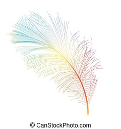 Bird Feather Hand Drawn Background Vector Illustration