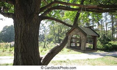 Bird Feeder - bird feeder weighs on the tree, and reeling...