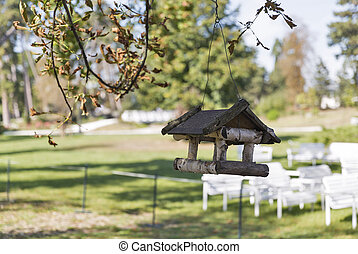 Bird feeder hanging on a tree in the park closeup