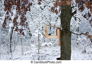 bird feeder hangs on a tree in the winter. A lot of snow.