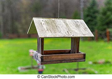 Bird feeder in the forest.