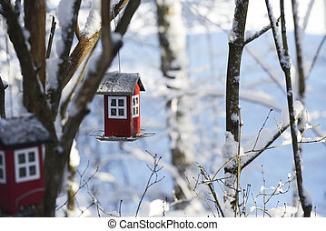 bird feeder in the form of a house hanging on a branch in the winter garden
