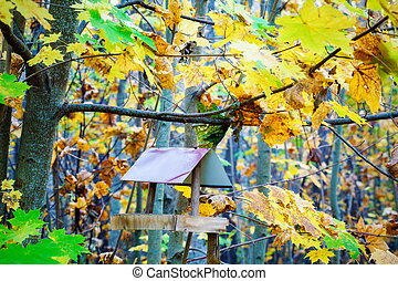 Bird feeder in the park between colorful autumn leaves