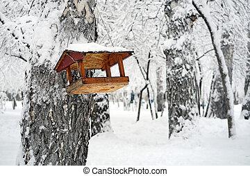 Bird Feeder in the Park - Wooden Bird Feeder in the Winter...