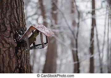 bird feeder in winter forest on a tree