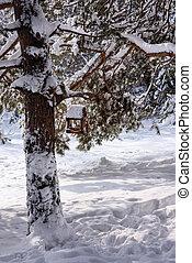 Bird feeder on a snow-covered tree
