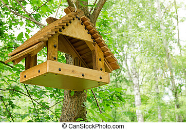bird feeder on a tree in the spring forest