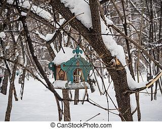 bird feeder on a tree under newly fallen snow in Novosibirsk, Russia