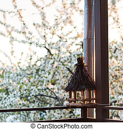 Bird feeder on balcony