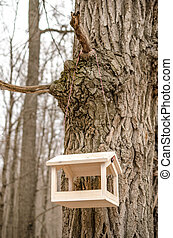 bird feeders. tree house for the birds
