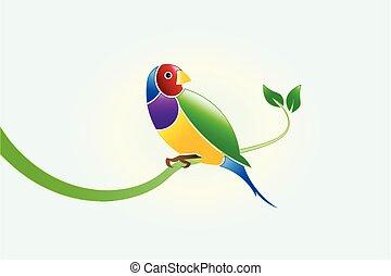 Bird - Finch beautiful colorful bird on a branch leaf....