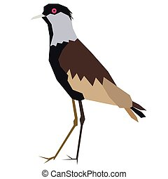 bird flat illustration on white