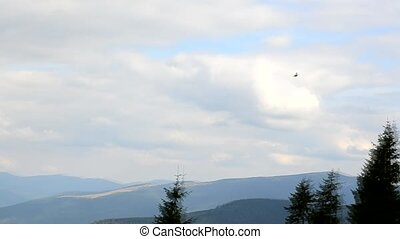 Bird flies on background of white clouds and sky in mountains