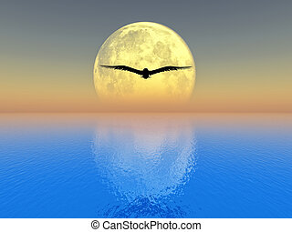 full moon - bird flying over the sea on full moon background