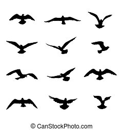 Bird flying silhouette set. Wildlife icon collection