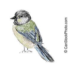 Bird Hand drawn