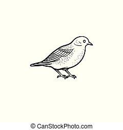 Bird hand drawn sketch icon.