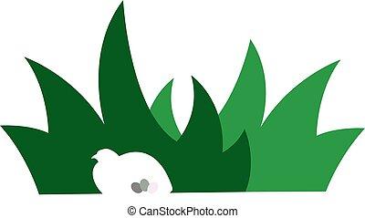 Bird Hidden in Grass. - Bird with Eggs Hidden in Grass....