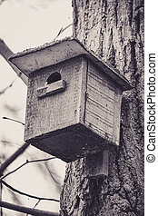 Bird house hanging on a tree